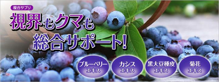 บลูเบอร์รี่ - บิลเบอร์รี่ Blueberry - Bilberry Extract