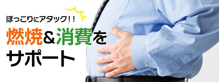 พกโกะริ ไดเอท อาหารเสริมลดน้ำหนัก