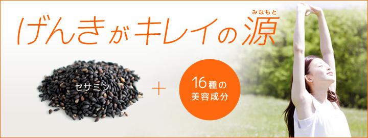 Black Sesame งาดำ